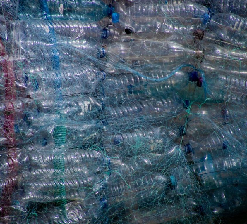 Bottles in net